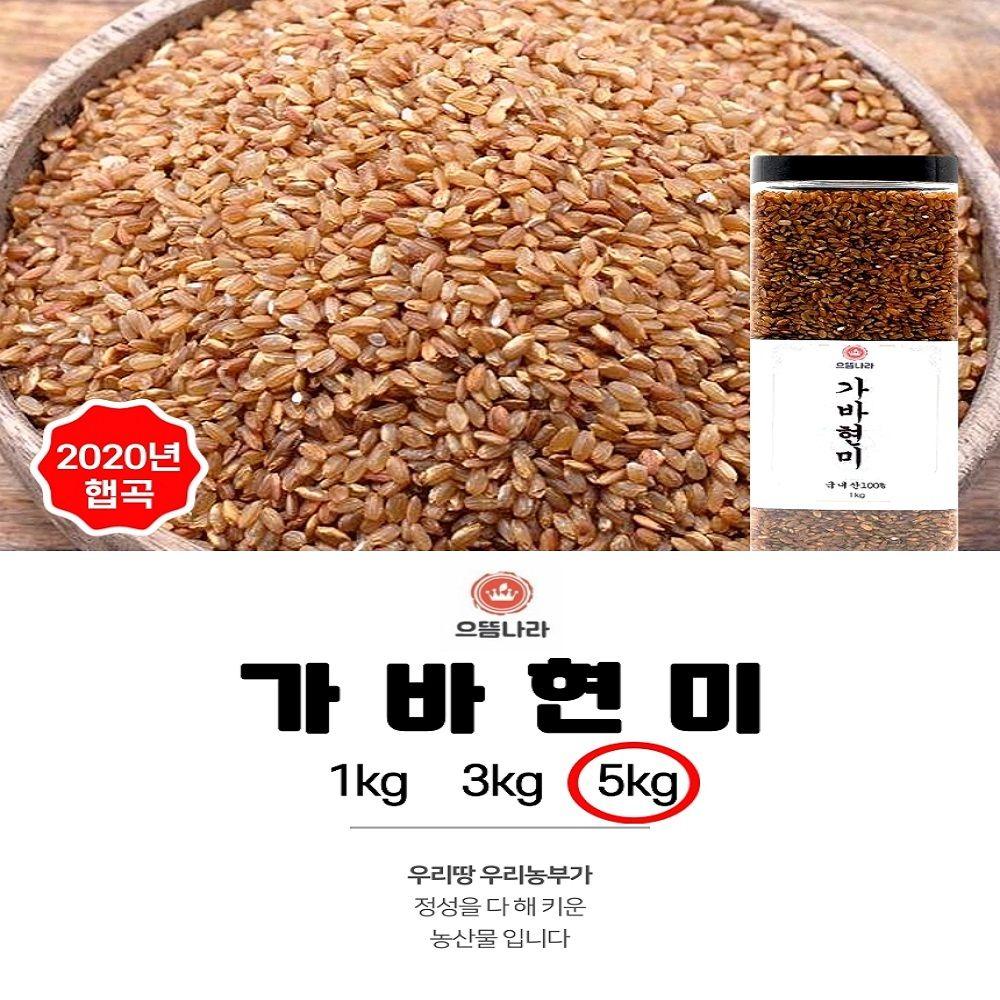 으뜸나라 웰빙 국내산 가바현미 5kg